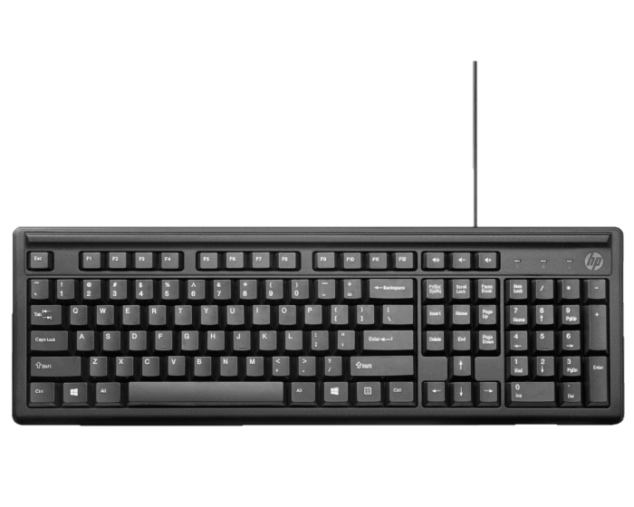 Teclado HP 100 Conexión USB Negro