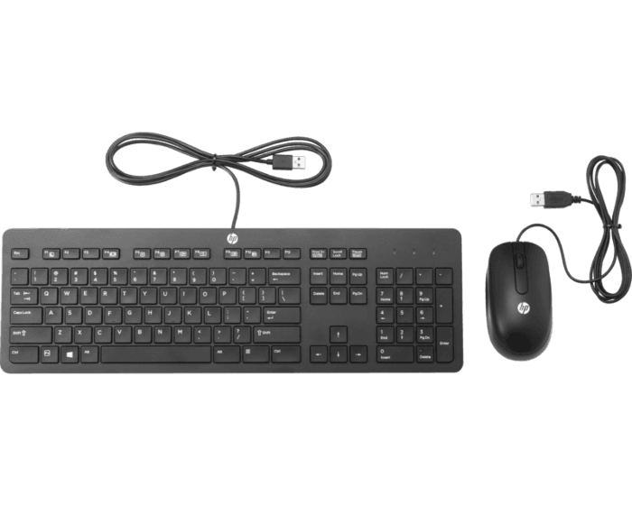 Kit HP de Teclado/Mouse de Bus USB